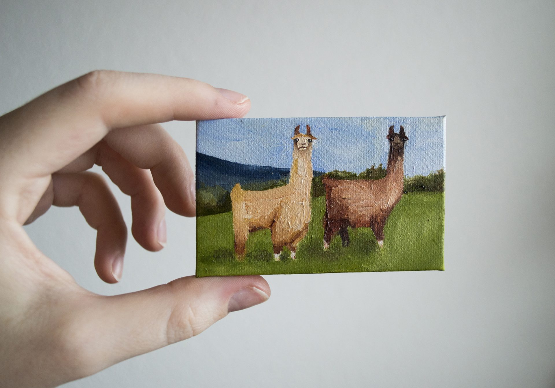 llamas-mini-canvas