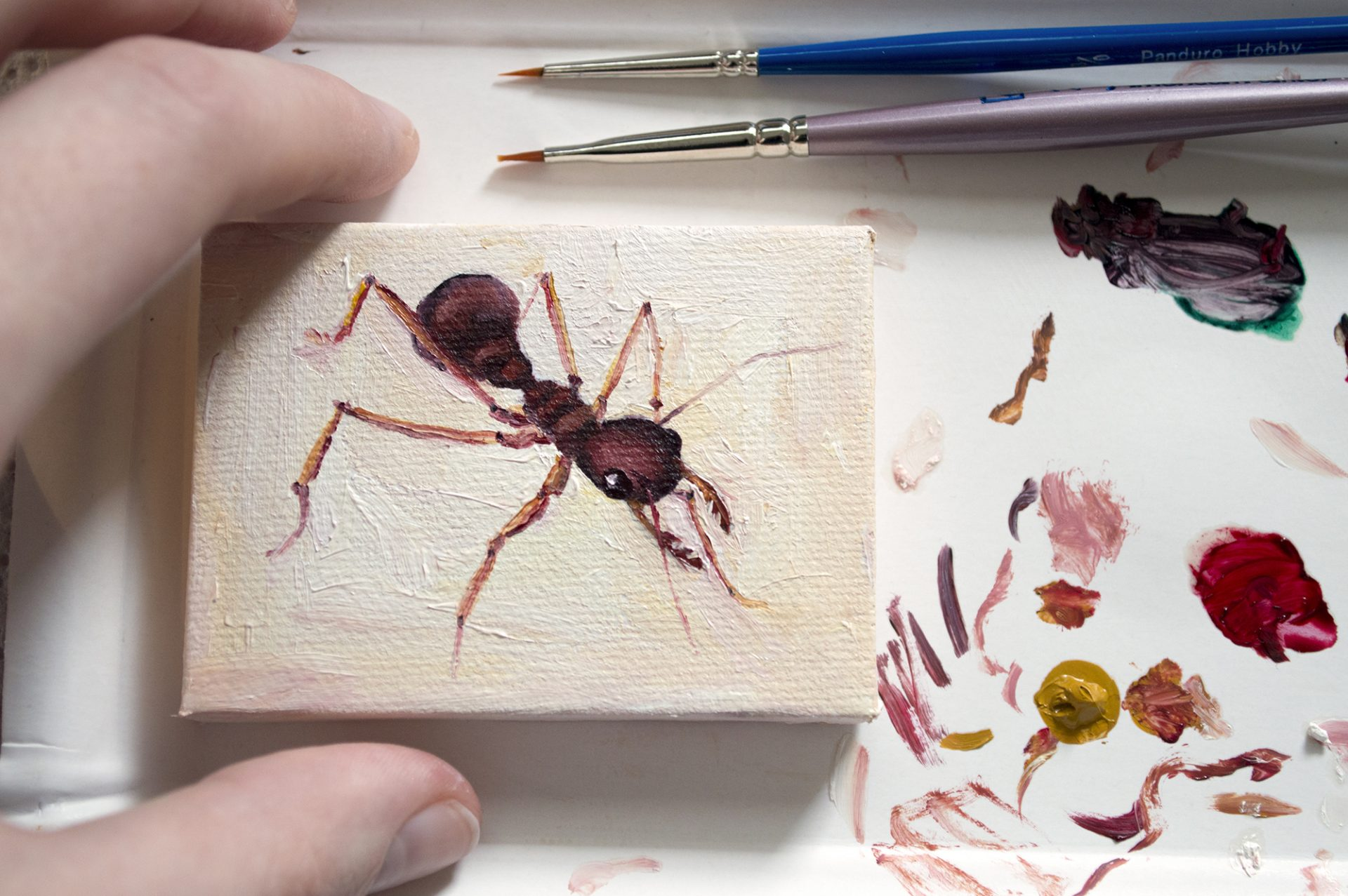 miniature-painting-ant
