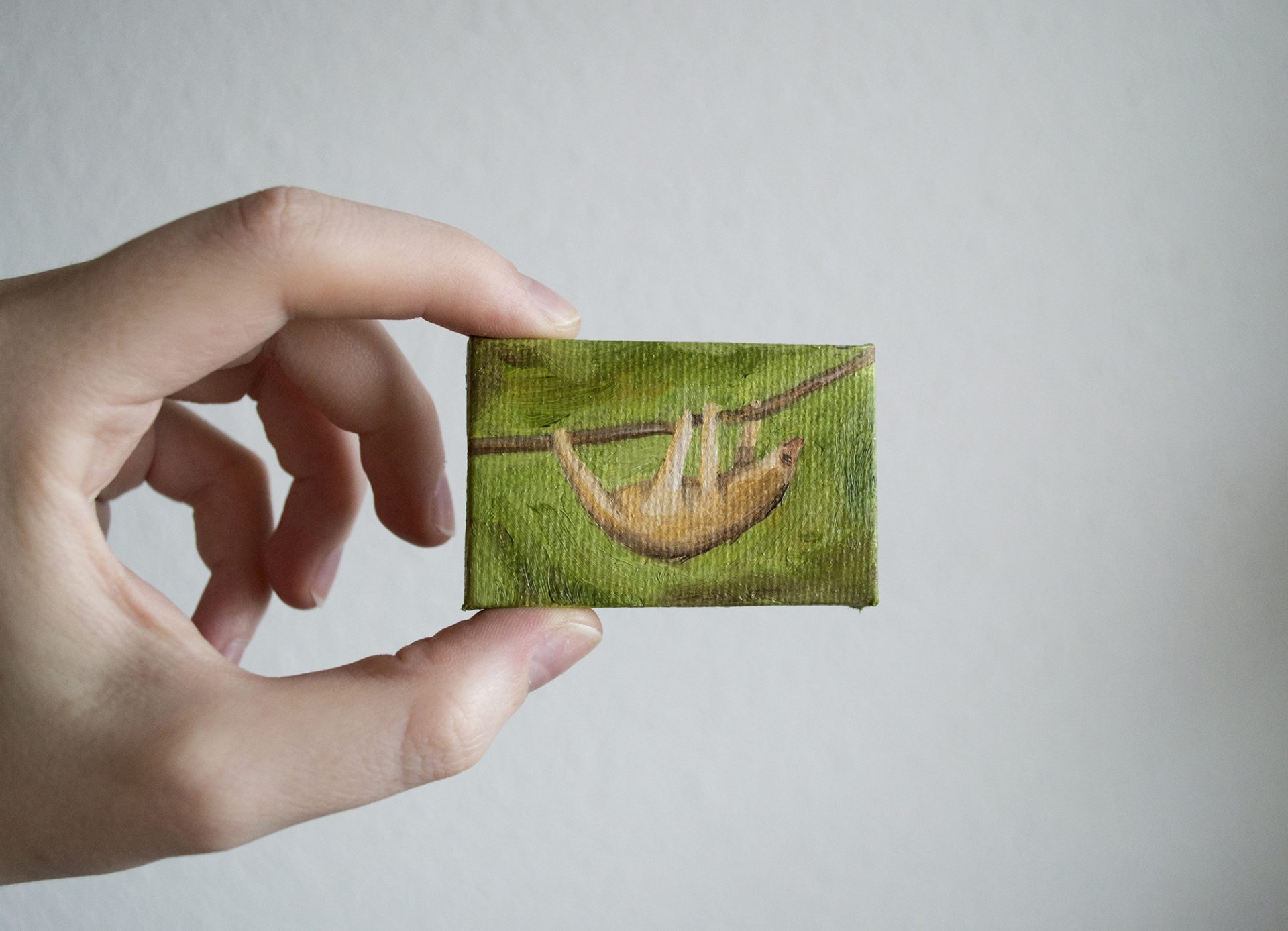 sloth-tiny-canvas